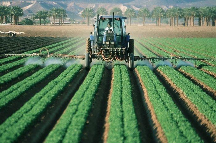 Alimenti senza pesticidi nell'Unione Europea
